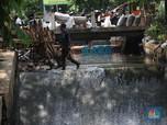 Antisipasi Musim Penghujan & Banjir, Perbaikan Turap Dikebut