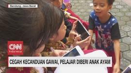 VIDEO: Kecanduan Gawai, Pelajar Diberi Anak Ayam