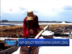 KKP Janji Serap Garam Lokal