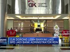 OJK Dorong BPD Jadi Administrator RDN