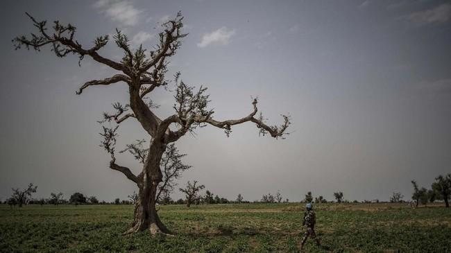 PBB mencatat 70 ribu orang telah mengungsi dan berlindung meninggalkan Mopti akibat aksi kriminalitas dan pemberontakan.(Photo by Marco LONGARI / AFP)
