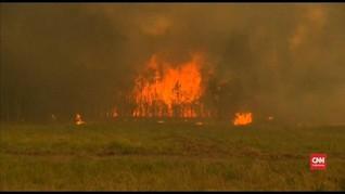 VIDEO: Dua Tewas dalam Kebakaran Besar di Australia