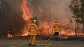 Pemerintah mengeluarkan peringatan ancaman kebakaran besar bagi masyarakat yang bedada di Sydney dan kawasan Hunter. (Photo by PETER PARKS / AFP)