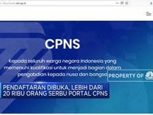Pendaftaran CPNS Dibuka, Portal BKN Diserbu