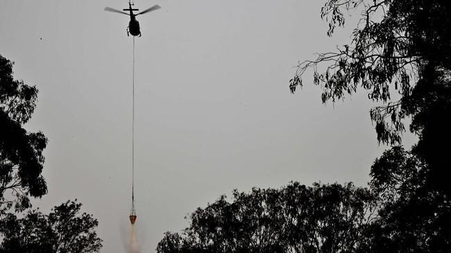 Bencana kebakaran hutan kali ini dilaporkan sebagai yang terburuk terjadi di Sydney sejak 2009 lalu. (Photo by PETER PARKS / AFP)