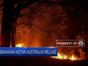 Kebakaran Hutan di Australia Kian Meluas