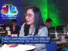 APNI Sambut Baik Kesepakatan BKPM Soal Ekspor Nikel