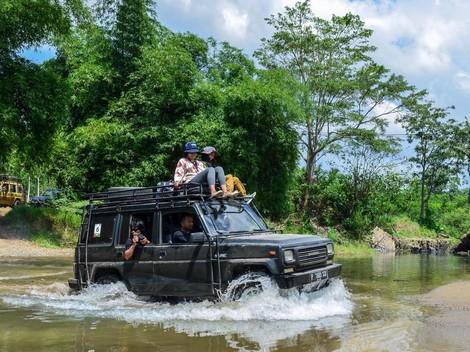 Ekowisata Bersama Kawanan Penyu di TN Meru Betiri