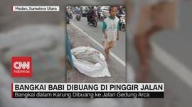 VIDEO: Bangkai Babi Dibuang di Jalanan Kota Medan