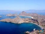 Tiket Rp 14 Juta Wisata Pulau Komodo, Ini PR Berat Jokowi!