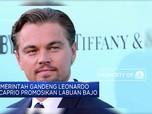 Pemerintah Gandeng Leonardo DiCaprio Promosikan Labuan Bajo