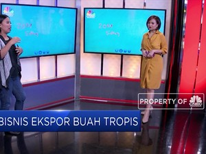 Yuk Cari Peluang Bisnis Ekspor Buah Tropis