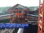 9M-2019, Laba Bersih Golden Mines Anjlok 52,79%
