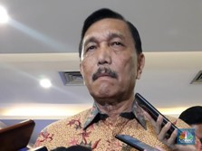Banyak Urusannya, Menteri Luhut Bakal Punya 6 Deputi