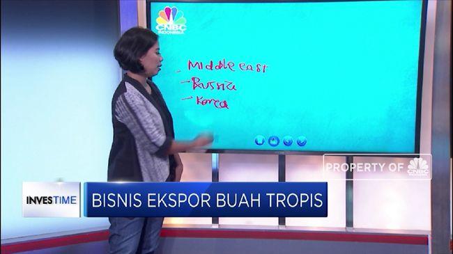 Kunci Sukses Bisnis Ekspor Buah Tropis