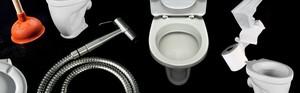 Mencari Sehat Lewat Toilet