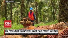 VIDEO: Negara Uni Eropa Dukung Industri Sawit Indonesia