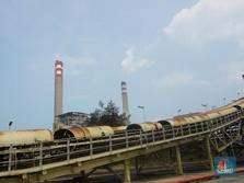 2 PLTU Batu Bara Ini Berhasil Dicampur dengan 10% Biomassa