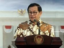 Putri Tanjung Jadi Stafsus Jokowi, Ini Kata Seskab