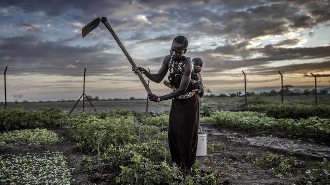 Sulit dibayangkan untuk bisa bertahan hidup di tengah kondisi seperti ini. Namun nyatanya, komunitas setempat tak menyerah pada situasi. (Luis TATO / AFP)