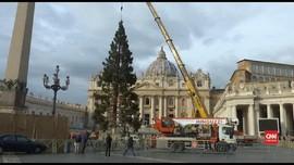 VIDEO: Detik-detik Pemasangan Pohon Natal Raksasa di Vatikan