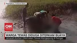 VIDEO: Warga Tewas Diduga Diterkam Buaya
