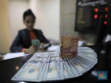 Pak Jokowi, Ini Kunci Tekan CAD: Indonesia Harus Berdikari
