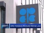 OPEC akan Perpanjang Kebijakan Pengurangan Produksi Minyak