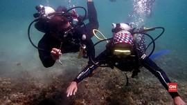 VIDEO: Menikmati Alam Bawah Laut Pulau Lembeh Sulawesi Utara