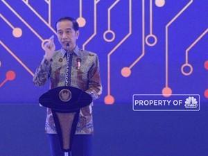 Jokowi: Tidak Perlu Takut CPO Kita di-Banned Eropa