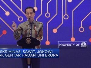 Jokowi: Kita Gunakan Sendiri Kalau Sawit Masih Didiskriminasi