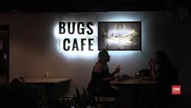 VIDEO: Masakan Ekstrem Kafe Serangga di Kamboja