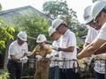 Gandeng NGO, MIND ID Lakukan Aksi Charity di Beberapa Wilayah