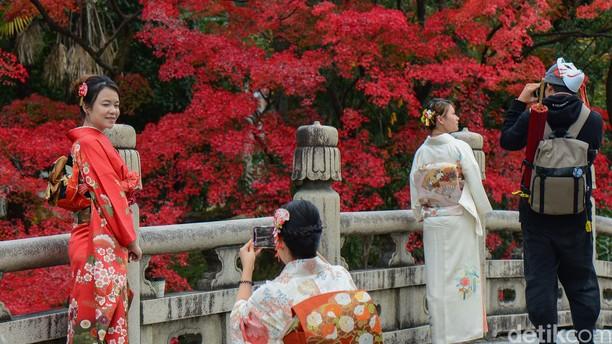 Membuktikan Keindahan Musim Gugur di Kyoto