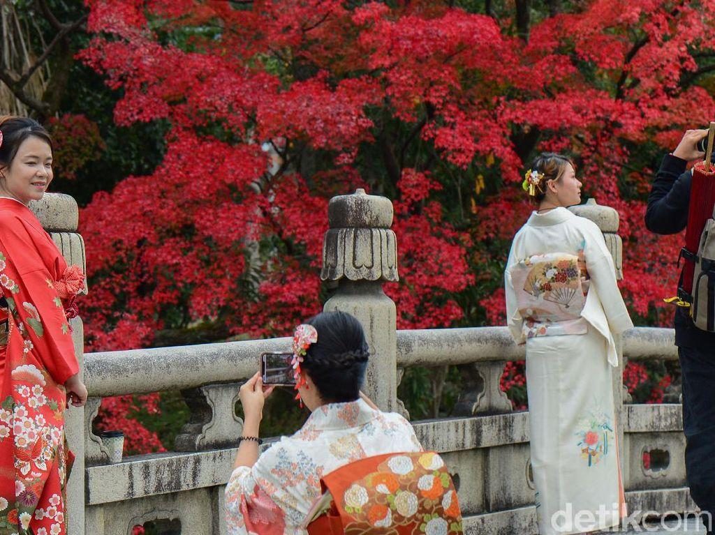 Para turis dan warga berfoto dengan latar dedaunan menguning dan memerah pada musim gugur di Kyoto, Jepang, (26/11/2019).