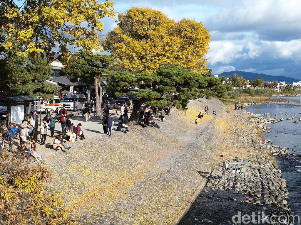 Para turis menikmati musim gugur di Kyoto, Jepang.