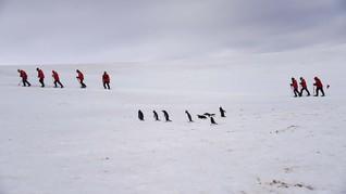 FOTO: Ramai-ramai ke Antartika Sebelum Musnah