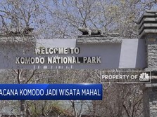 Wacana Pulau Komodo jadi Tempat Wisata Mahal