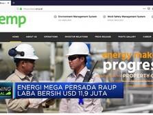 Energi Mega Persada Raup Laba Bersih USD 11,9 Juta