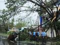 Badai Kammuri di Filipina Telan 13 Korban Tewas