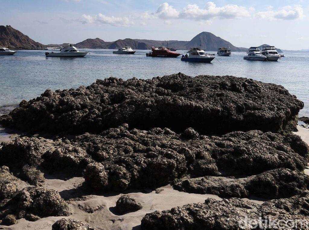Bukit Padar yang berada di pulau ini kerap jadi tujuan para wisatawan untuk mengabadikan keindahan alam lewat bidikan kamera.