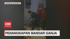 VIDEO: Polisi Gerebek Rumah Bandar Ganja di Karawang
