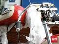 Ganti Direksi Garuda Terlibat Harley Ilegal Diputus di RUPSLB