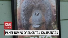 VIDEO: Panti Jompo Orangutan Kalimantan