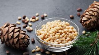 5 Manfaat Kacang Pinus, untuk Tulang hingga Jantung