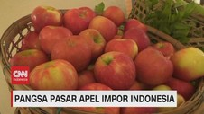 VIDEO: Melihat Pangsa Pasar Apel Impor Indonesia