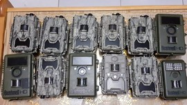 Polisi Ciduk Pencuri 13 Kamera Pemantau Harimau Sumatera