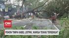 VIDEO: Pohon Timpa Kabel Listrik, Warga Tewas Tersengat
