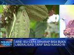 Askindo Harap Perjanjian IEU-CEPA Dorong Pasar Kakao di Eropa