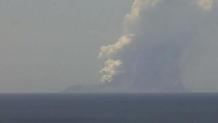 Gunung Selandia Baru Meletus sampai RI Tolak Bayar Tebusan